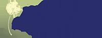VCFAA Logo